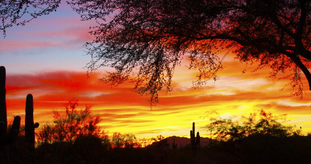 Through The Lens of an Arizona Mystery Writer