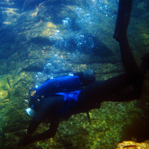 First dive of the day from the Baja Explorador