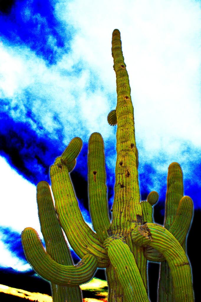 Saguaro City by Michael Allan Scott, circa 2013