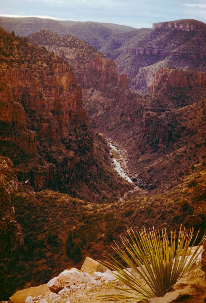 Theresa Scott - Canyon